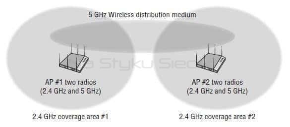Wireless Distribution System na przykładzie sieci typu Mesh